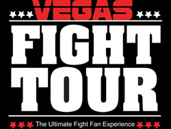 vegas flight tour